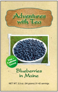 Blueberries in Maine